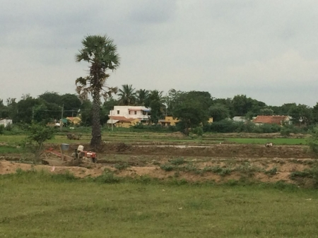 1.53  Acres Agriculture and farm 1 house land for sale in Keeranur at Illaiyavayal