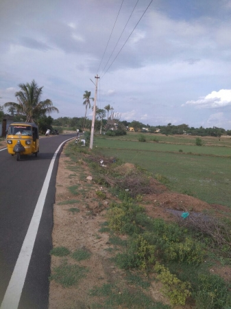 1.53  Acres Agriculture and farm  house land for sale in Keeranur at Illaiyavayal